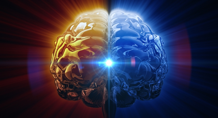 This Strange Rule Is What Makes the Human Brain So Powerful