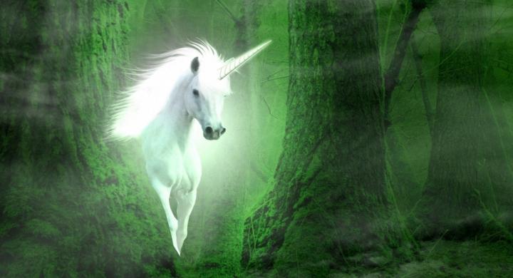 Unicorns Can Be Born in Crisis