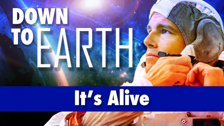 Down To Earth - It's Alive