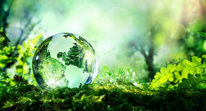The Environmental Performance Index 2020