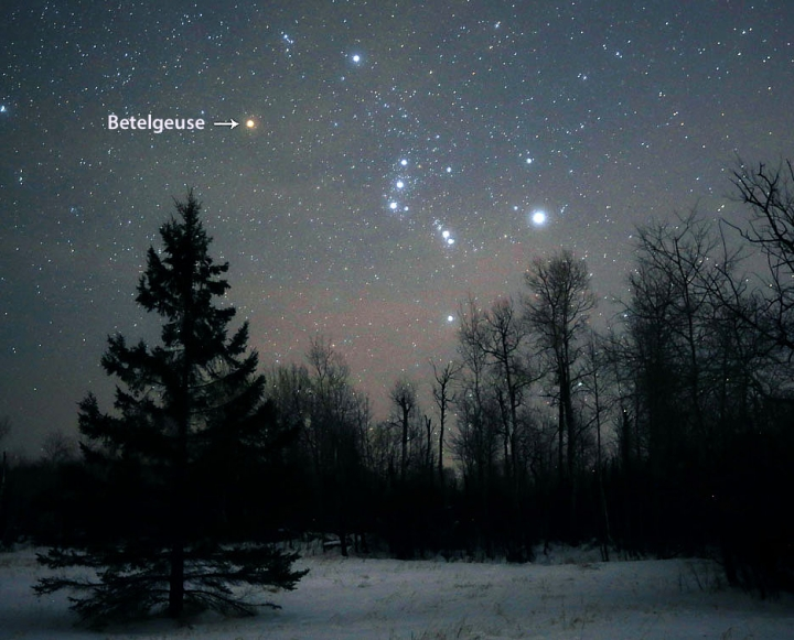 What's Up With Betelgeuse?