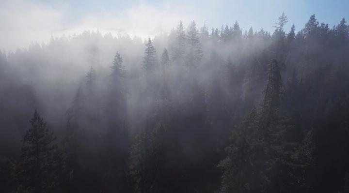 RISE - Oregon Aerial