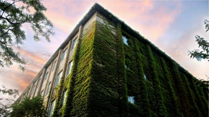 The Home of the Future Isn't Smart - It's Living and Green
