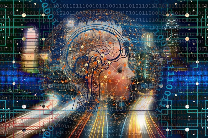 Memory Cells that Help Us Interpret New Situations Identified