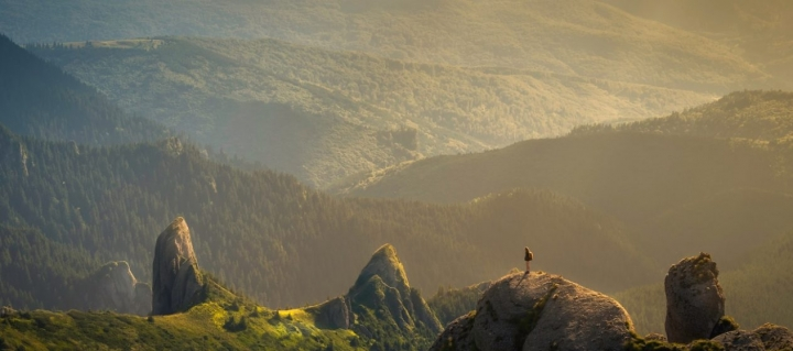5 Lessons on How to Save Our Relationship with Nature in 2020