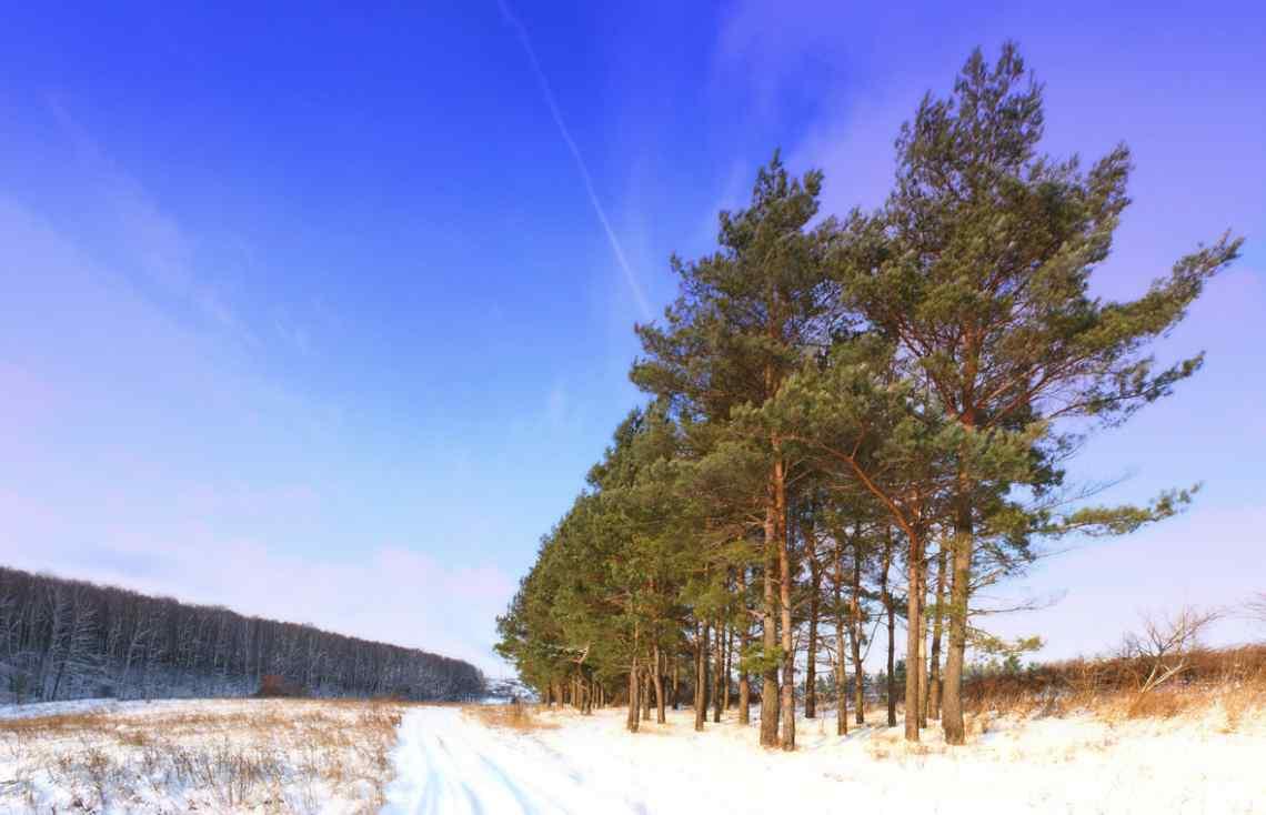 Russia, winter road
